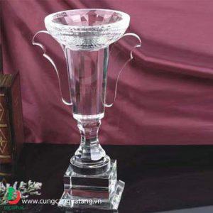 cup_pha_le_06
