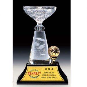 cup_pha_le_golf_04