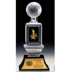 cup_pha_le_golf_18