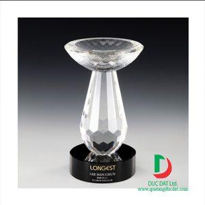 cup_pha_le_golf_52