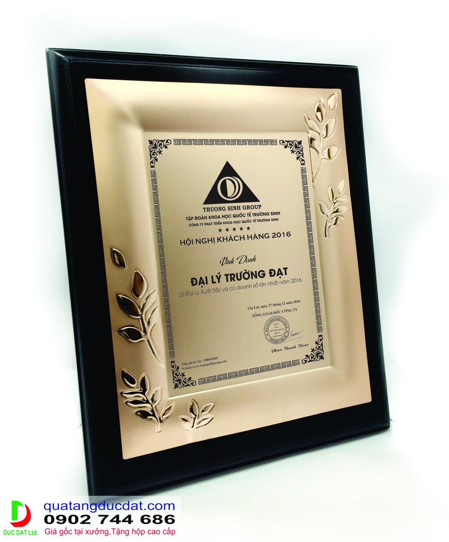 kỷ niệm chương gỗ đồng
